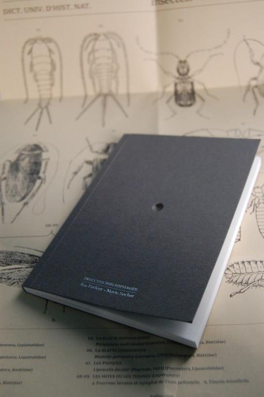 """Livre """"Insectes bibliophages"""""""